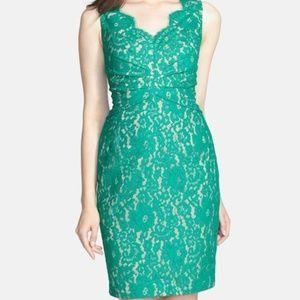 NWOT green lace Eliza J Dress, 6